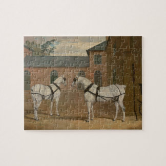 Grey Carriage Horses in The Coachyard - Herring Jigsaw Puzzle
