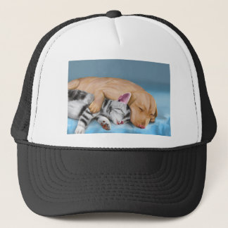 Grey Cat and Brown Dog Sleeping and Hugging Trucker Hat