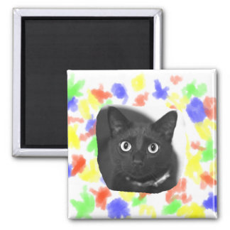 Grey Cat Big Eyes BW Picture Magnet
