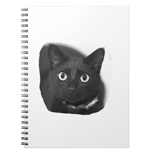 Grey Cat Big Eyes BW Picture Notebook