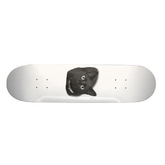 Grey Cat Big Eyes BW Picture Skateboard Deck