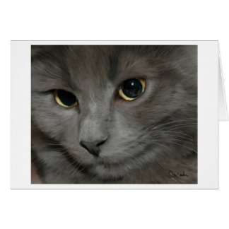 Grey Cat Card