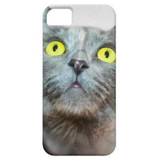 Grey cat iPhone 5 cover