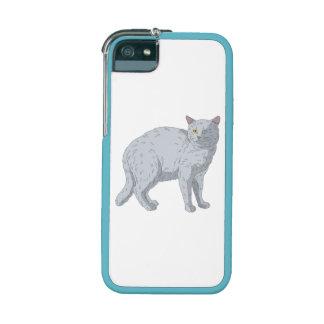 Grey Cat iPhone 5/5S Case