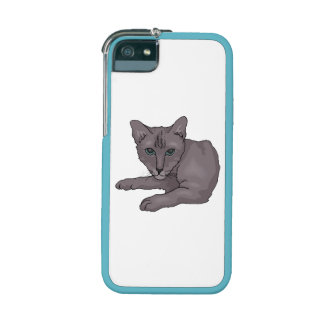 Grey Cat iPhone 5 Cases