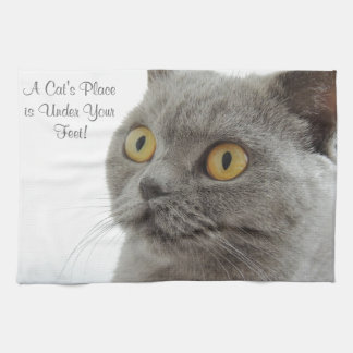 Grey Cat Golden Eyes Close-up Towel