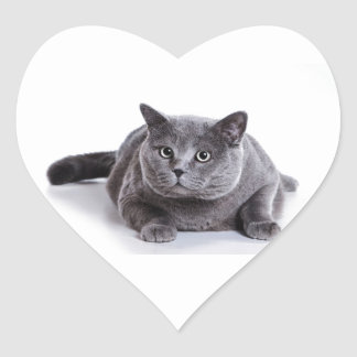 Grey Cat Heart Sticker