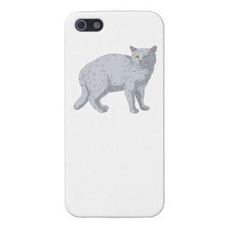 Grey Cat Cover For iPhone 5/5S