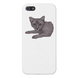Grey Cat iPhone 5/5S Cover