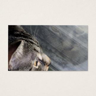 Grey Cat Looking Out the Window Business Card