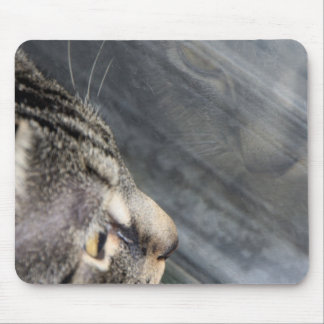 Grey Cat Looking Out the Window Mouse Pad