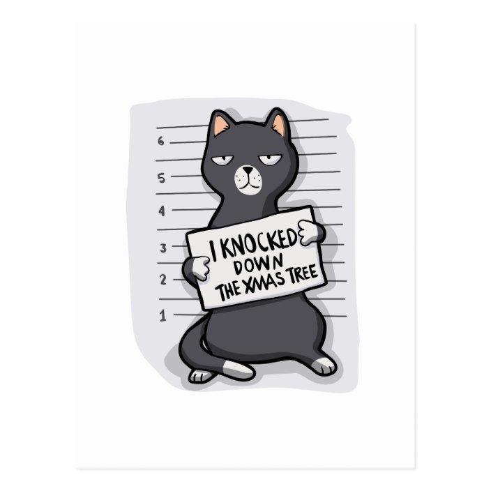 Grey Cat Mugshot Cat Cartoon Postcard Zazzle Com