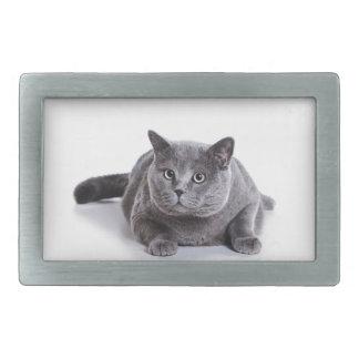 Grey Cat Rectangular Belt Buckle