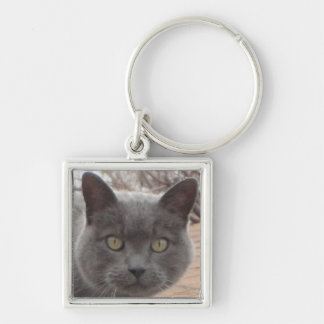 Grey cat roof keychain Silver-Colored square keychain