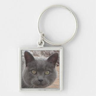 Grey cat roof keychain