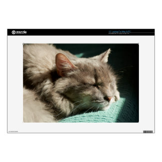 Grey Cat - Sleeping in Sunlight Decal For Laptop