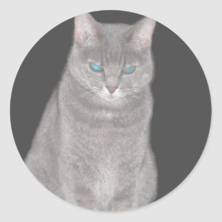 Grey Cat Sticker