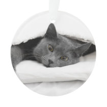 Grey Cat Under White Blanket Ornament