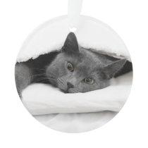 Grey Cat Under White Blanket Ornament
