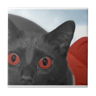Grey Cat With Orange eyes Blended picture Ceramic Tiles