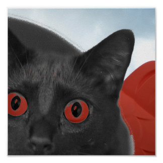 Grey Cat With Orange eyes Blended picture Print