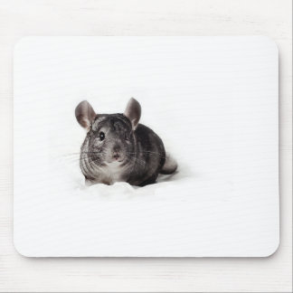 Grey Chinchilla Cute in Blanket Mouse Pad
