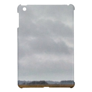 grey clouds above marsh case for the iPad mini
