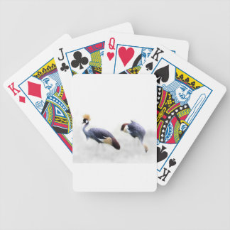 grey crowned crane bird wings feathers bicycle playing cards