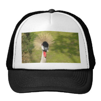 Grey Crowned Crane Trucker Hats