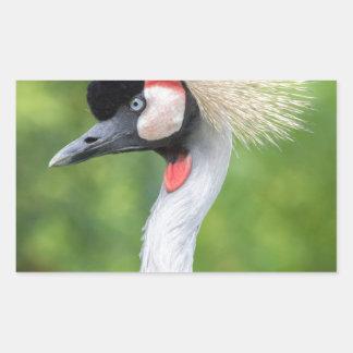 Grey crowned crane head and neck rectangular sticker
