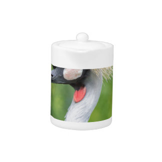 Grey crowned crane head and neck teapot