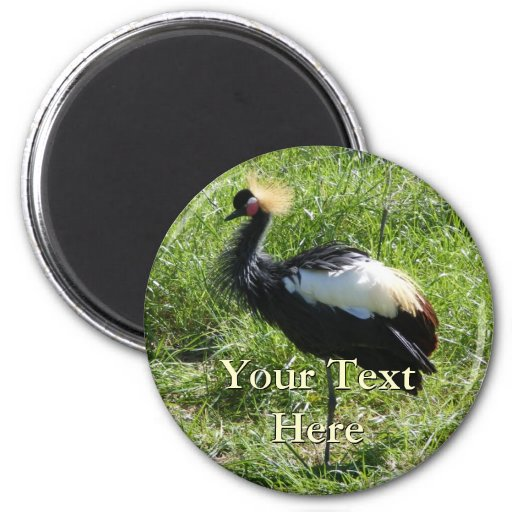 Grey Crowned Crane Magnet