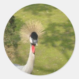 Grey Crowned Crane Classic Round Sticker