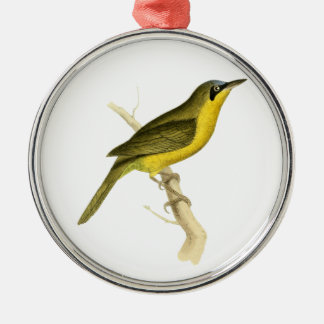 Grey-crowned Tanager Bird Illustration by William Metal Ornament