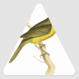 Grey-crowned Tanager Bird Illustration by William Triangle Sticker