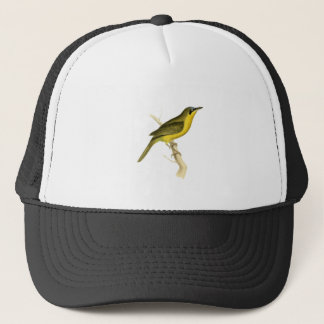 Grey-crowned Tanager Bird Illustration by William Trucker Hat