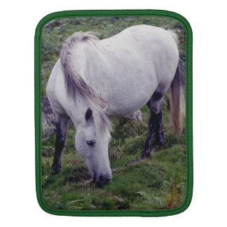 Grey Dartmoor Pony Grazing In Rocks iPad Sleeve