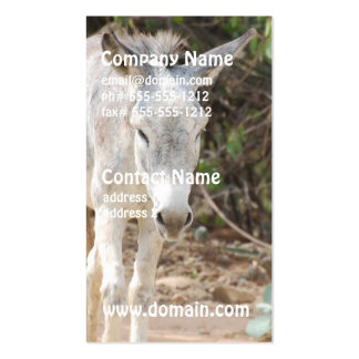 Grey Donkey Business Card