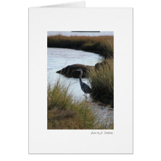 Grey Egret on the River Card