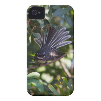 Grey Fantail iPhone 4 Covers