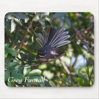 Grey Fantail Mousepads