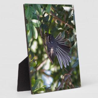 Grey Fantail Plaque