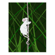 Grey field mouse in the tall grass post cards