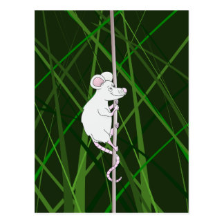 Grey field mouse in the tall grass postcard