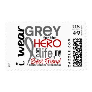 Grey For My Hero 2 Best Friend Brain Cancer Stamp