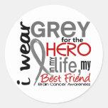 Grey For My Hero 2 Best Friend Brain Cancer Sticker