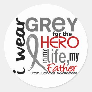 Grey For My Hero 2 Father Brain Cancer Classic Round Sticker