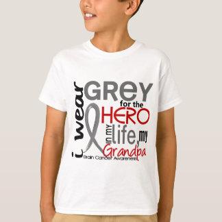 Grey For My Hero 2 Grandpa Brain Cancer T-Shirt