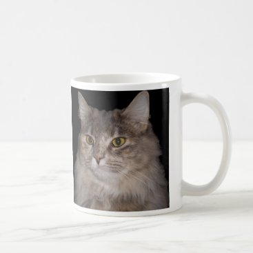 Coffee Themed Grey Furry Cat on Coffee Cup