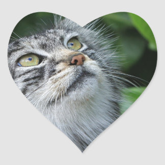 Grey Fuzzy Kitty Cat Heart Sticker